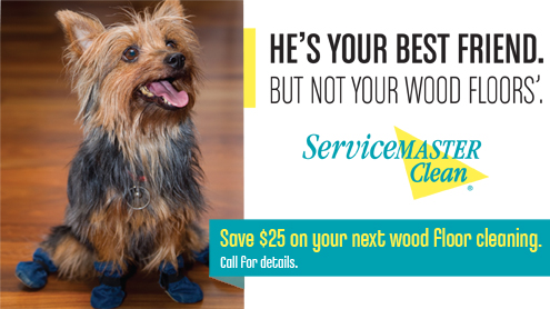 Wood floor cleaning coupon for Wichita